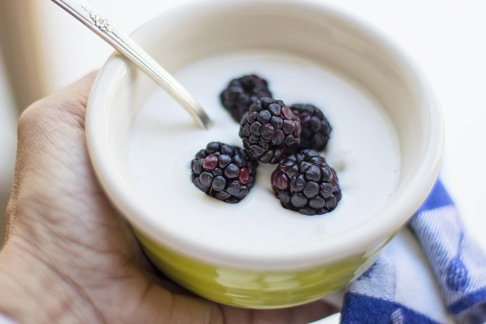 yaourtiere choix